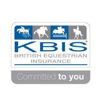 Logo for KBIS Ltd.