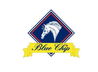 Logo for Blue Chip Feed