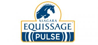 Logo for Equissage UK