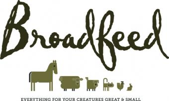 Logo for Broadfeed Ltd.