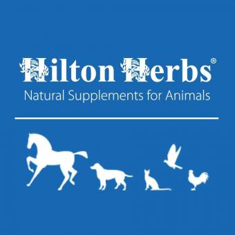 Logo for Hilton Herbs Ltd.